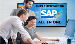 implementación sap all in one