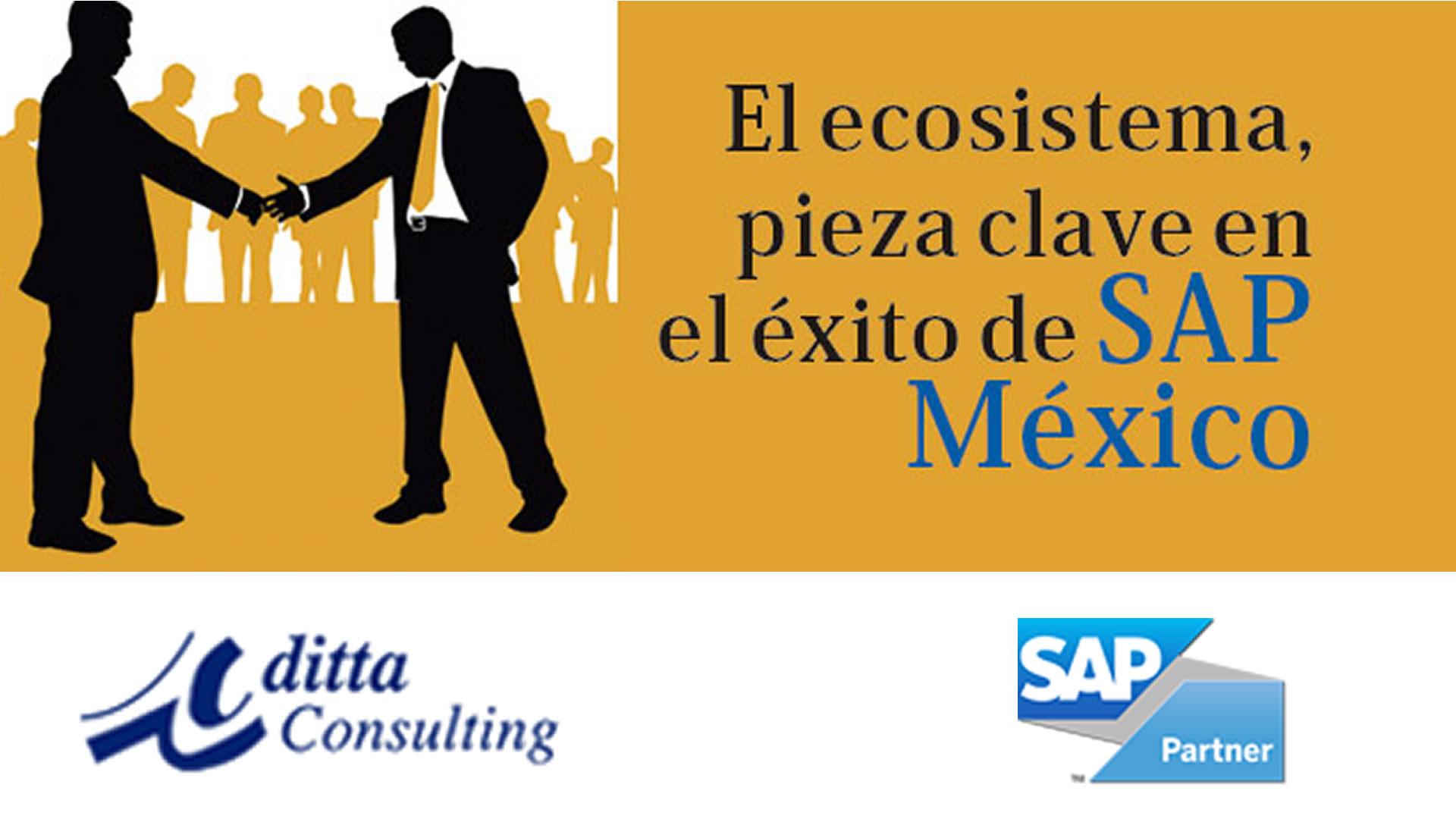SAP Partner en México