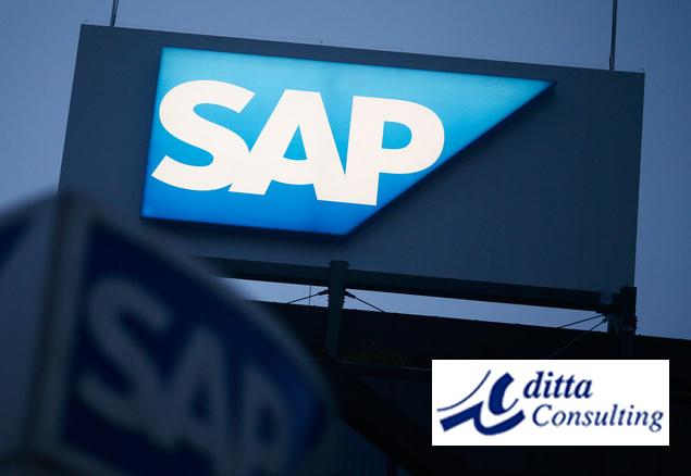 Implementación SAP en México