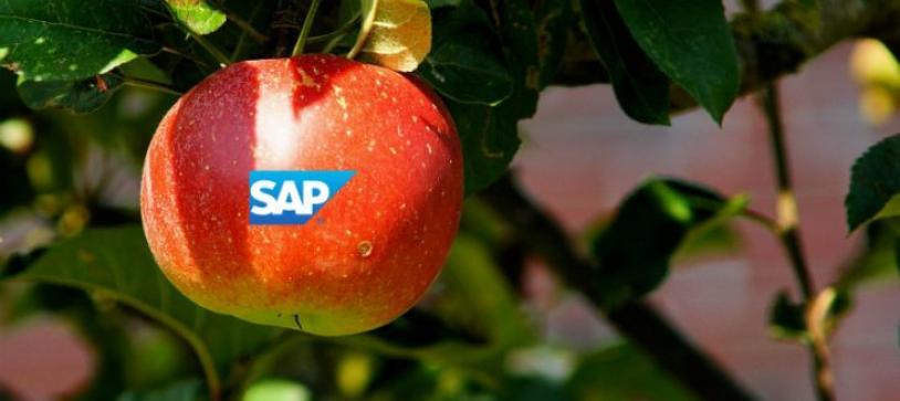 SAP y Apple unen fuerzas para Desarrollos de Movilidad