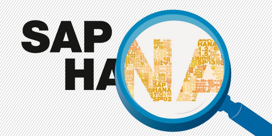 SAP HANA sienta las bases para la tecnología in-memory